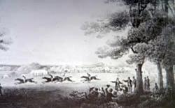 Horse Racing on Southampton Common